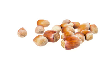 haselnuts isolated on white background
