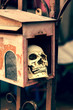 Small human skull in mail box