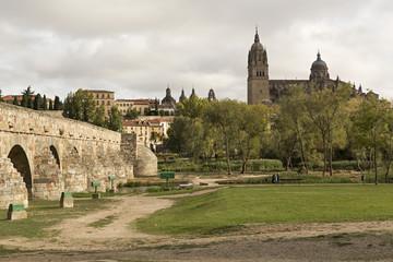 Vista de la catedral de Salamanca y puente romano