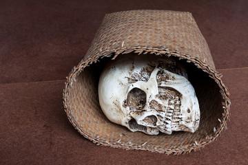 Human skull in wicker basket