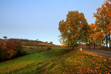 going to nature in autumn