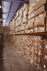 Shelves with boxes in warehouse
