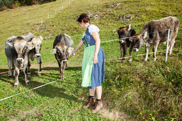 Woman in Dirndl with the cows