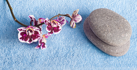 Spa stones and pink orchid