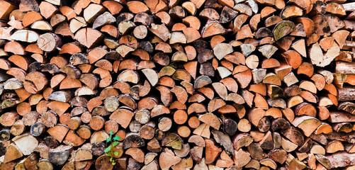 Wunderschönes Holzlager im Garten