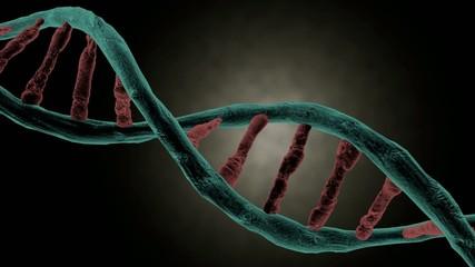 DNA strand spinning