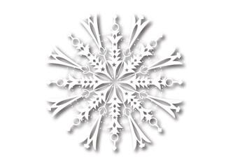 Schneestern