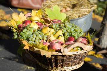 Green grapes and apples in a basket, rustic style