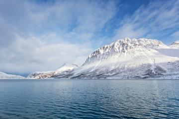 Norwegian fjord, winter scenery