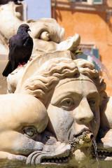 Rom und seine Brunnen