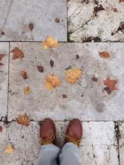 Primeras hojas de otoño