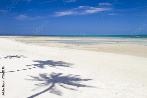 Foto op Plexiglas Indonesië Beach with coconut