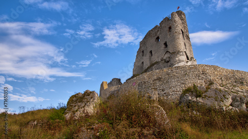 Medieval ruins of Mirow Castle, Poland - 71651353