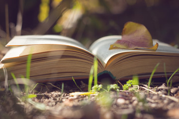 book on the nature