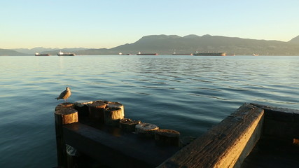 Sunrise Freighters English Bay dolly shot