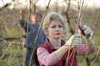 Agriculture, female farmer pruning grape branch in vineyard