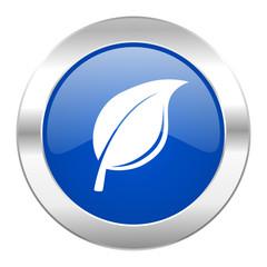 nature blue circle chrome web icon isolated