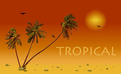 Sea and coconut palms. Vector sunset