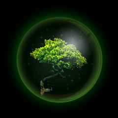 Tree in glass ball retort. Vector