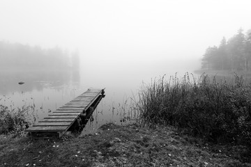 Foggy bridge in monochromatic landscape