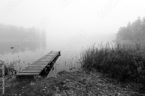 Foggy bridge in monochromatic landscape - 71656395