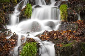Quellwasser © Matthias Buehner