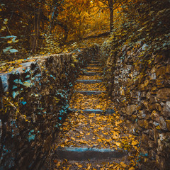 Autumn landscape. Climbing trail with stone steps