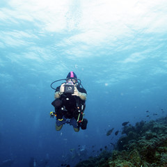 Corals and Scuba Diver with Photo
