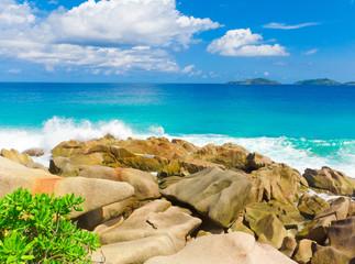 Exotic Seascape Stones