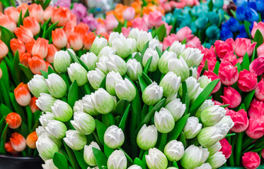 Traditional wooden colorful tulips at souvenir shop in Amsterdam