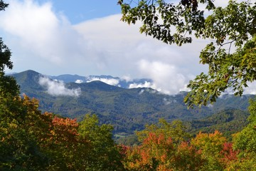 Appalachian Mountain Scene-01