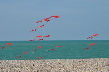 Cerf-volant rouge à Dieppe