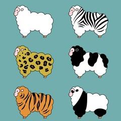 羊、毛皮バリエーション、セット