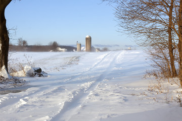 Snow Blowing Over Rural Road