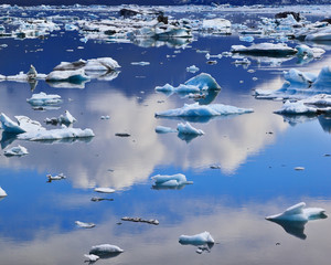 Blue icebergs and ice