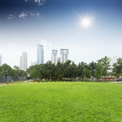 lawn and cityscape in city park