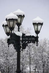 Streetlamp covered with snow