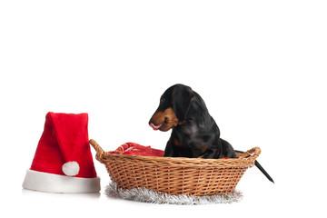 Waiting Santa Claus