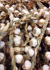 Garlic for sale at the supermarket