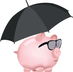 assicurazione valutaria