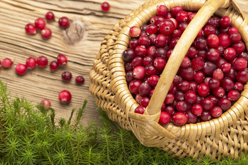 Cranberries in wicker basket on rustic board and moss.