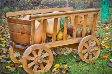 harvest pumpkins in a wooden cart