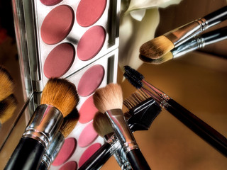 makeup color palette with brushes isolated on mirror.