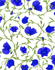 poppy blue flower ornamental background