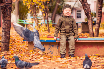 boy looking on flying birds at fall playground yard
