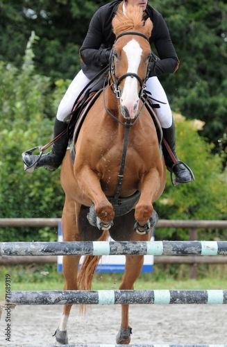 Fotobehang Paardrijden cheval saut d'obstacles