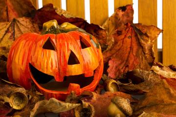 Halloweenkürbis vor Gartenzaun