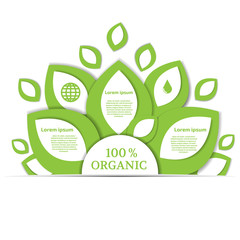 Template for eco infographic. Organic infographic