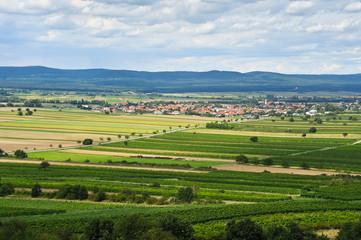 Gemeinde Oslip im Burgenland dahinter Leithagebirge