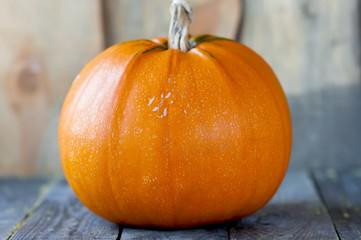 Big pumpkin on wooden boards.